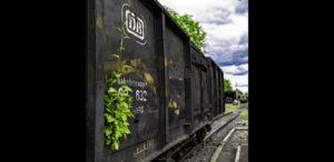 Der offene Güterwagen im Stand nach der Corona-Zwangspause, Juni 2020, Foto: Oliver Schaer